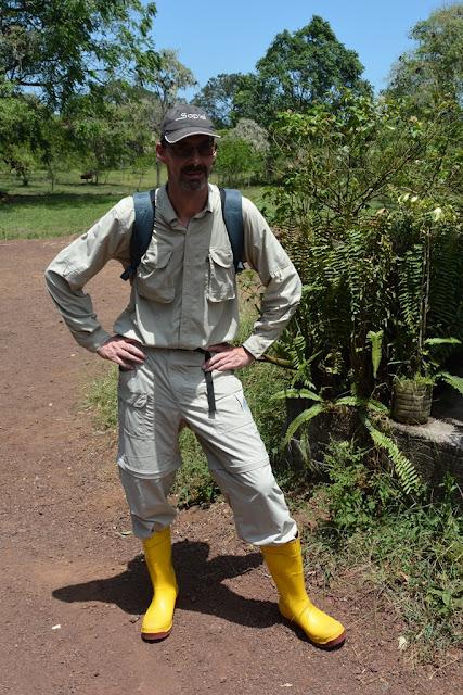 Tortoises Galapagos hiking