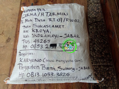 Benih pesanan  H. TARMIN Indramayu, Jabar.  (Setelah Packing)