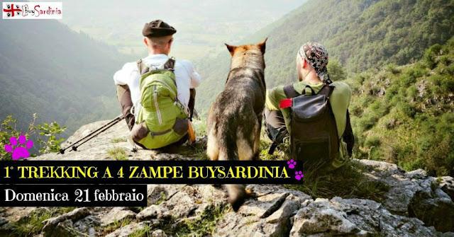 foto 1° trekking a 4 zampe buySardinia
