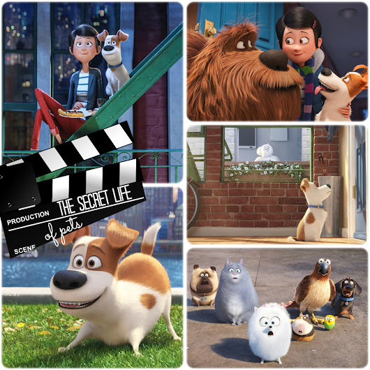 The Secret Life of Pets | Movie