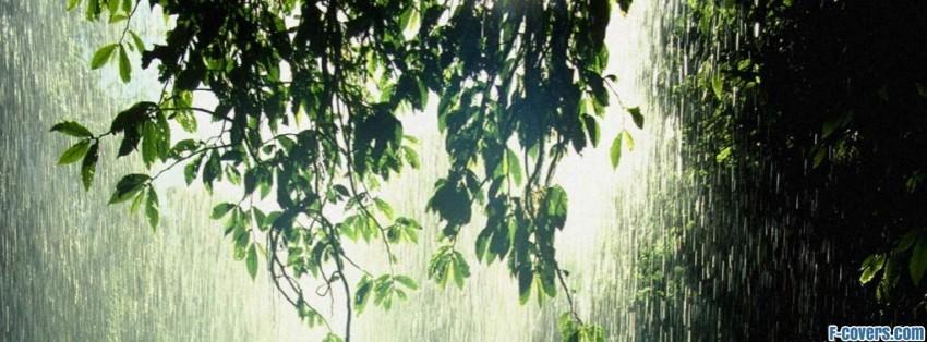 Ảnh bìa mưa đẹp, ảnh bìa facebook mưa buồn đầy tâm trạng