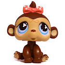 Littlest Pet Shop Tubes Monkey (#501) Pet