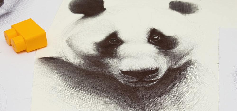 01-Panda-Yelena-Yefimova-Animals-Drawn-with-Ballpoint-Pens-www-designstack-co
