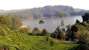 Wisata Danau Situ Patenggang Jawa Barat