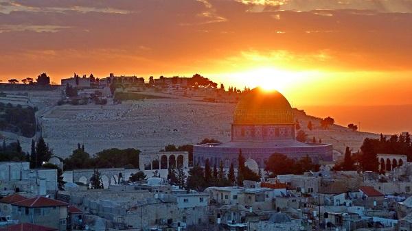 """فلسطين الجريحة """"الجزء الأول"""""""