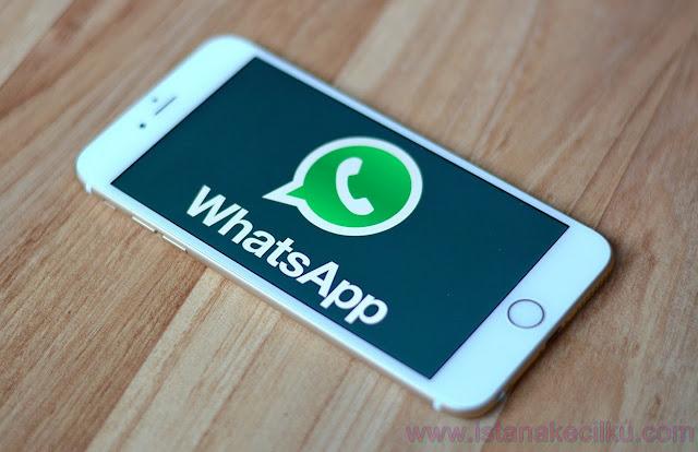 Trik WhatsApp: Cara Mengirim Banyak Pesan Sekaligus Pada Whatsapp Seseorang Dengan VBScript 2.0