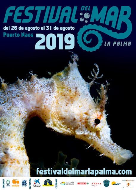 El Festival del Mar concienciará sobre la sostenibilidad y el respeto por la biodiversidad de nuestros fondos marinos