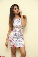 Nishi Ganda stunning cute in Flower Print short dress at Tick Tack Movie Press Meet March 2017 052.JPG