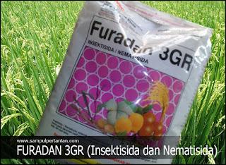 FURADAN 3GR (Insektisida dan Nematisida)
