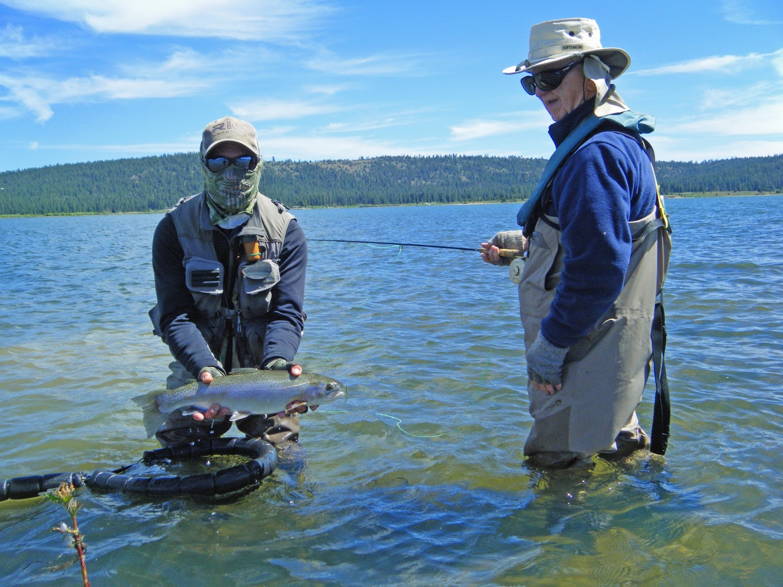 Jon baiocchi fly fishing news lake davis fishing report 6 for Lake fishing report