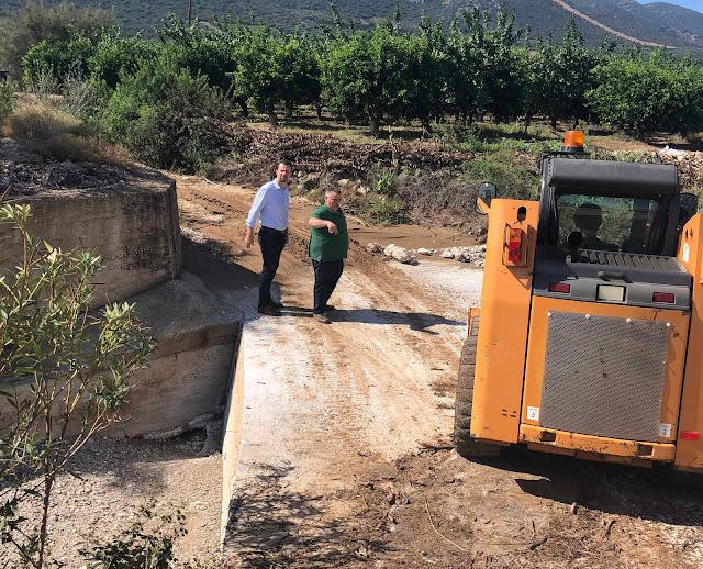 Ο Δημήτρης Κρίγγος για τις ζημιές και την επόμενη μέρα: Η μάχη για την αποκατάσταση σε οικίες και γεωργικές καλλιέργειες είναι πρώτος στόχος