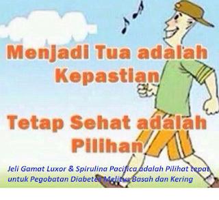 pilihan terbaik obat diabetes melitus