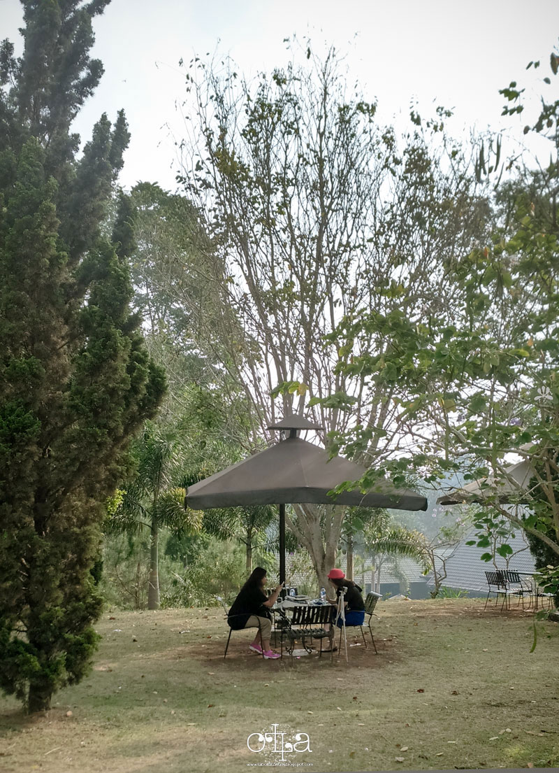 Piknik di The Green Forest Bandung