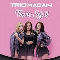 Lirik Lagu Tresno Sejati - Trio Macan dan Terjemahan