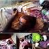 3 Elderly Women Heavily Attacked by Fulani Herdsmen for Resisting Rape in Ketu Lagos