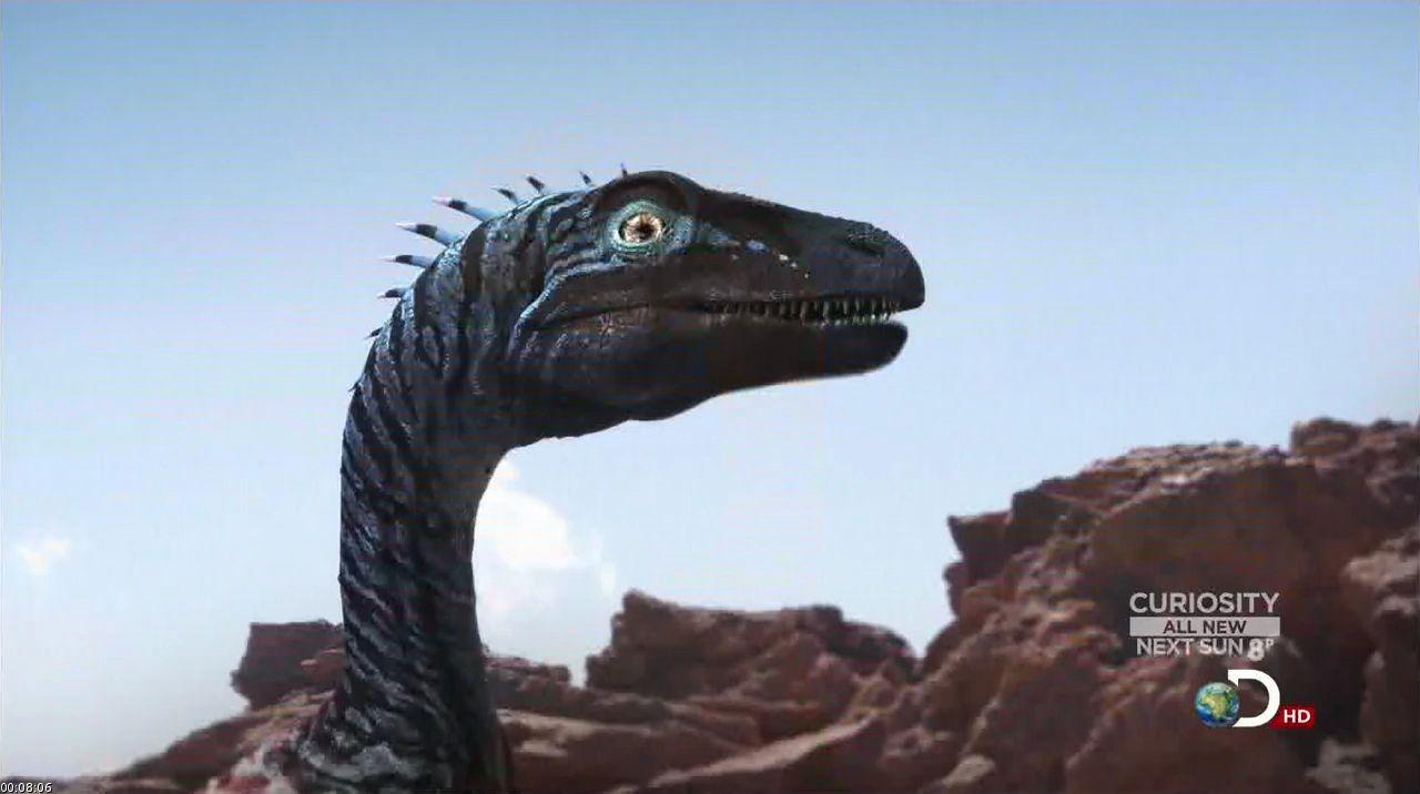 eoraptor dinosaur king - photo #10