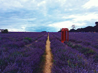 http://pridenstyle.blogspot.co.uk/2016/08/lets-paint-world-lavender.html
