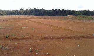 Peluang investasi lahan di Musirawas