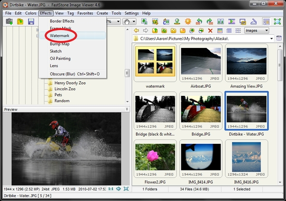 Download FastStone Image Viewer 6.6 Corporate Pro Full Version