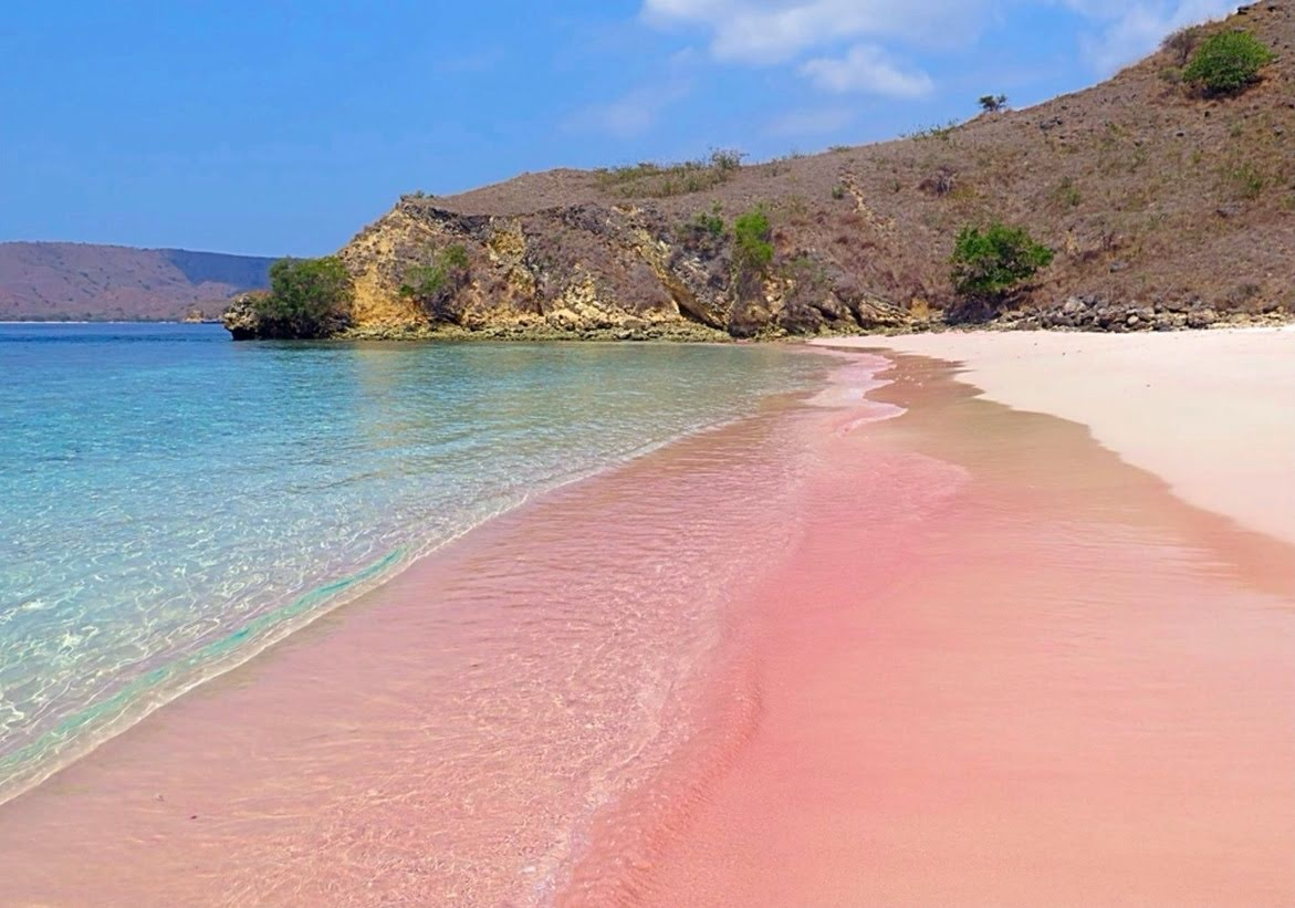 Keajaiban Dunia Pantai Pink Pulau Komodo