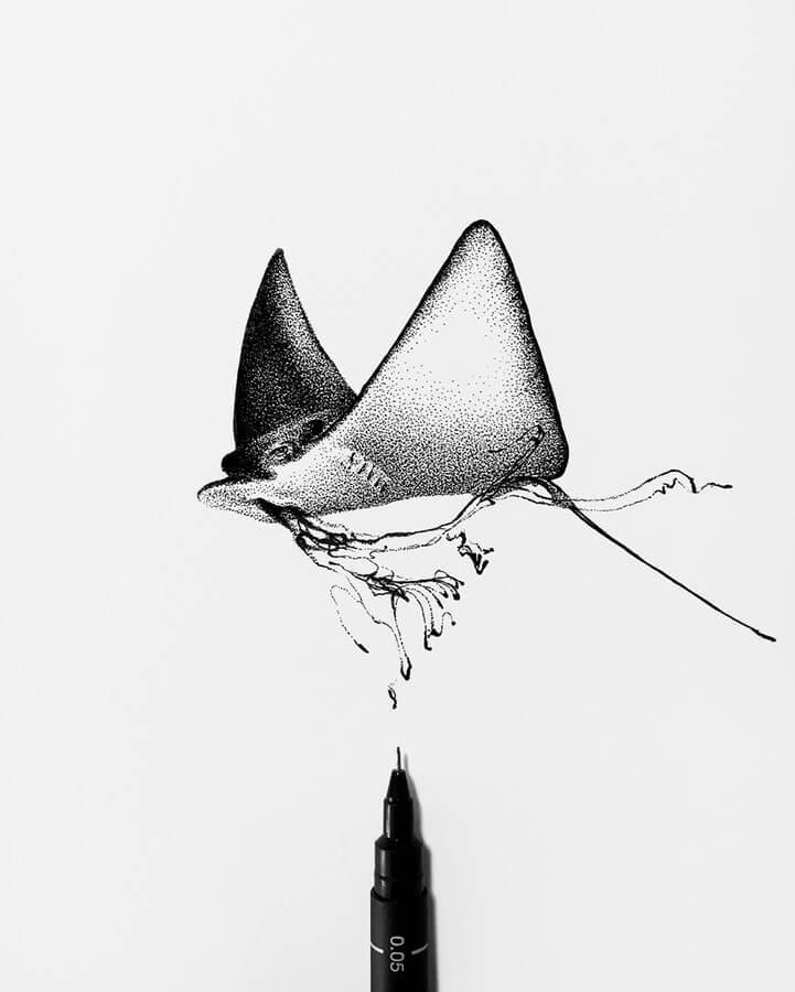 07-Manta-Ray-Rostislaw-Tsarenko-www-designstack-co