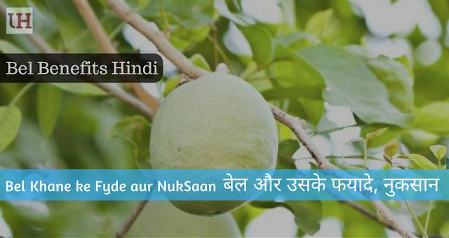 Bel Health Benefits in hindi, Bel ke fyde