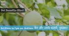 Bel Khane Ke Fayde - Bel Benefits and Side Effects Hindi me