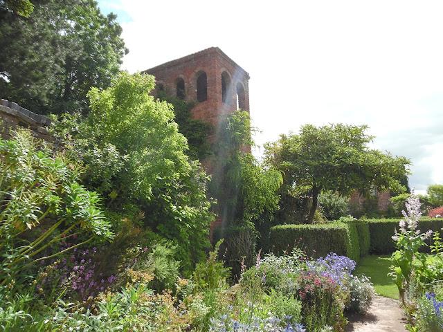 cegła w ogrodzie, pnącza