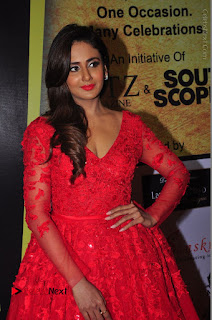 Actress Model Parul Yadav Stills in Red Long Dress at South Scope Lifestyle Awards 2016 Red Carpet  0033.JPG