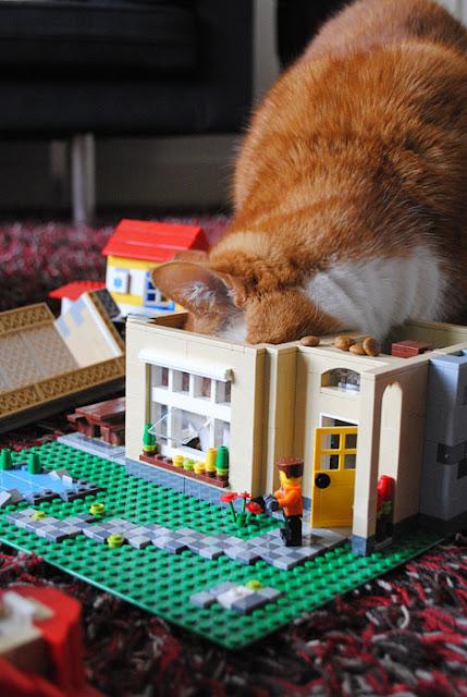 Een rode kat steekt zijn hoofd in een hui van lego waar het gehele dak vanaf is gevallen.