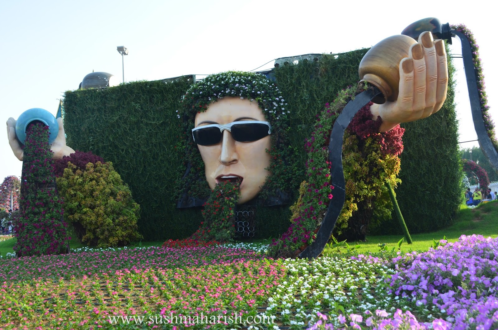 Exploring Beyond The Skyscrapers. Largest Flower Garden Of The World - Miracle Garden Dubai. 36
