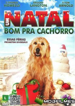Capa do Filme Um Natal Bom Pra Cachorro