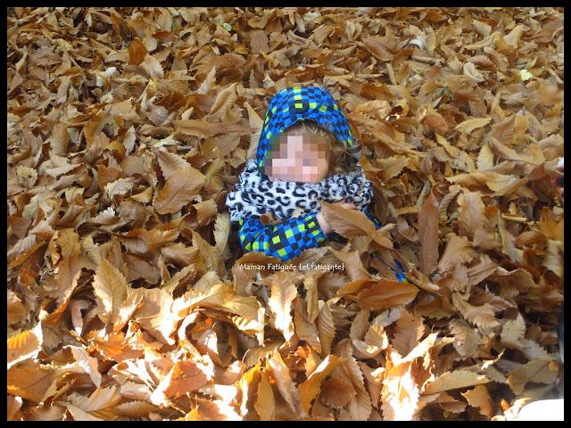 enfant feuilles mortes automne