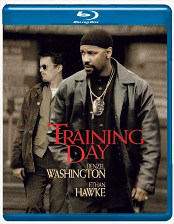 Training Day 2001 Dual Audio Hindi 480p BRRip 300mb