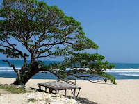Pantai Pok Tunggal Gunungkidul (Lokasi, Rute dan Tiket Masuk)