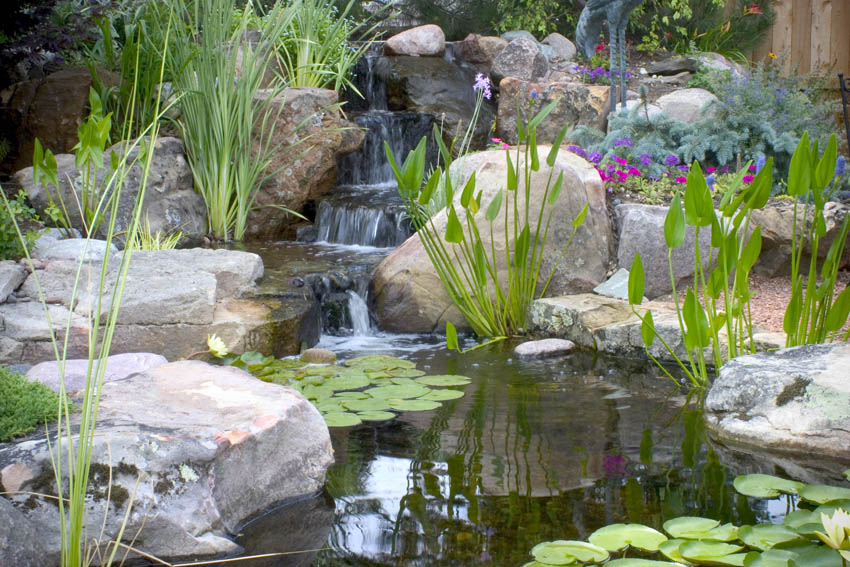 Aquascape Your Landscape: Small Ponds Pack a Punch on Small Backyard Pond With Waterfall id=43398