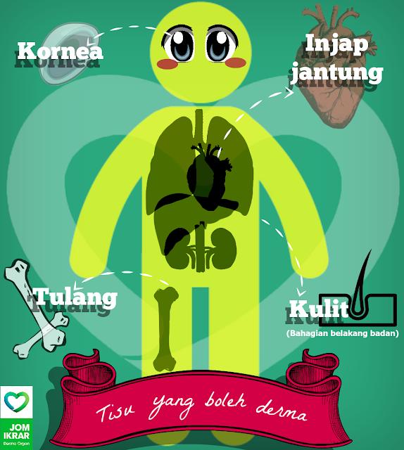 Image result for derma organ di malaysia