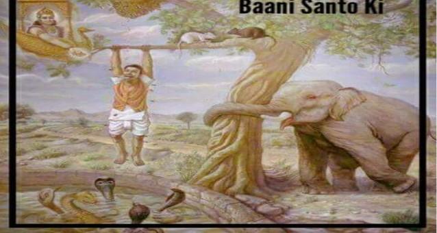 Saakhi- Sansarik Sukh hi Dukh ka Karan Hai | 5 अजगर और आदमी।