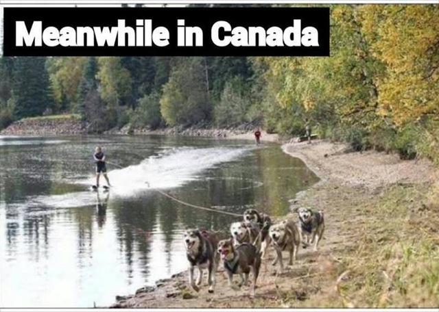Meanwhile.... In Canada....