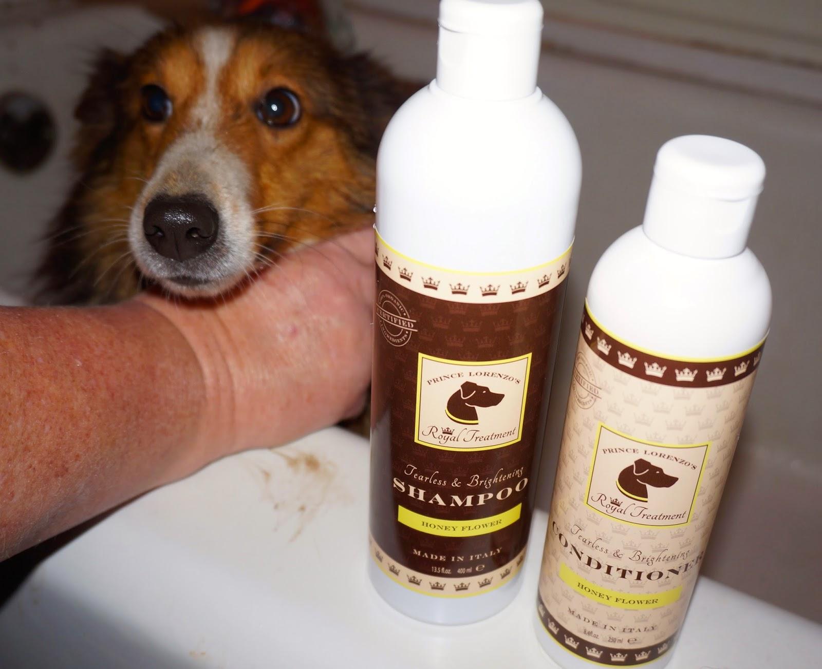 At the Fence: Royal Pet Club Organic Honey Flower Shampoo and