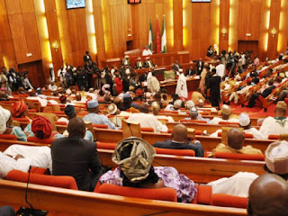 #EndSARS: Nigeria Senate Begins Investigations About the Alleged Human Rights Abuses
