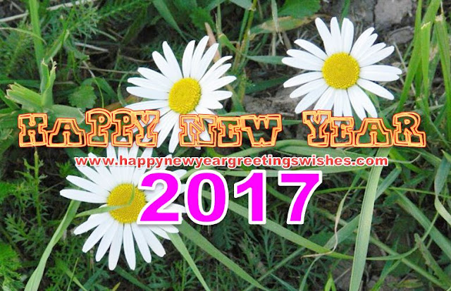 happy new year 2017 sms for whatsapp