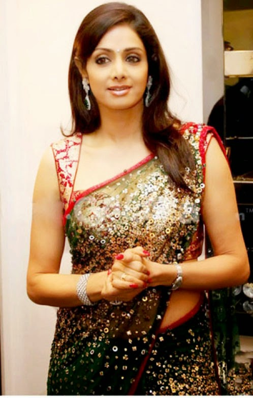 Bollywood Actress In Saree Sridevi Hot In Saree-9734