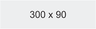 300x90