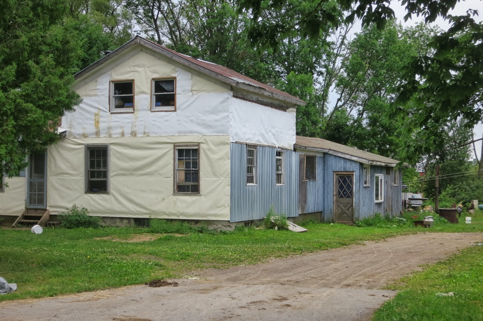 Swartzentruber Amish in Pulaski  | Tom The Backroads Traveller