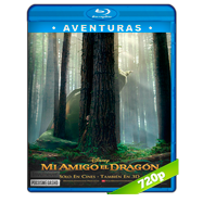 Mi amigo el dragón (2016) BRRip 720p Audio Dual Latino-Ingles