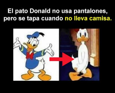 La lógica de las caricaturas pato lucas