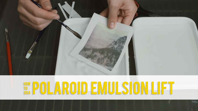 How To Do a Polaroid Emulsion Lift
