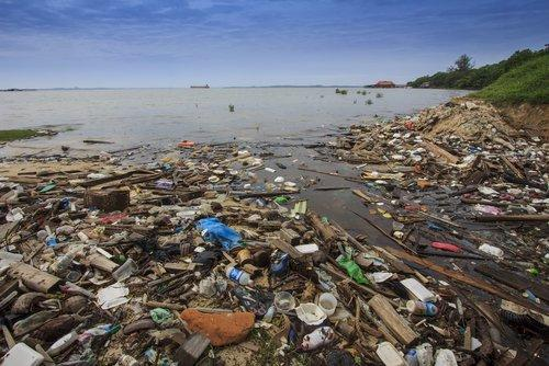 contaminacion ambiental, causas y consecuencias