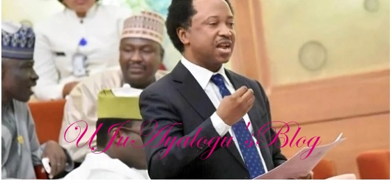 Nigerians must vote out APC, says Shehu Sani